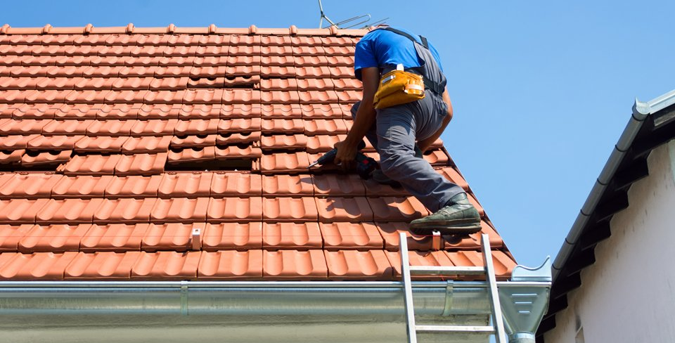Roofs Dh Coatings